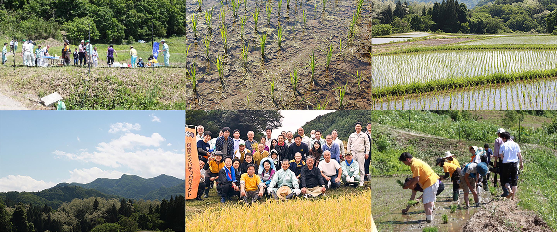 積善GINZA ひとごこちの苗植え風景